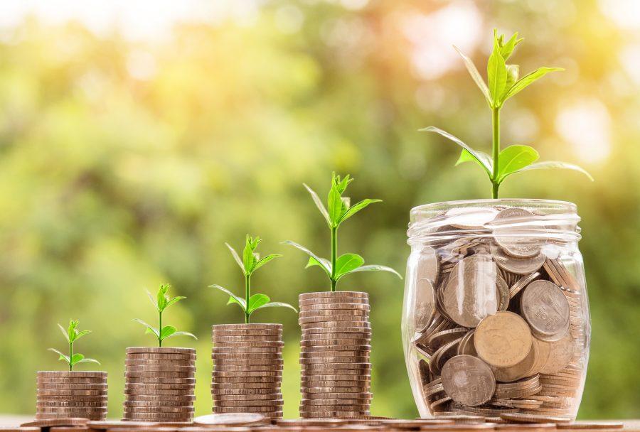 budgetpolitan money management personal growth